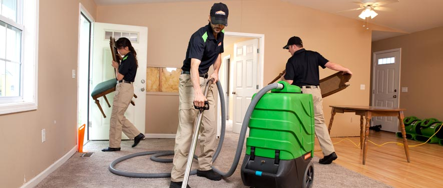 Canton, MI cleaning services